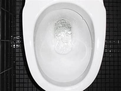 Blood Urine Pee Cause Protein Peeing Hole