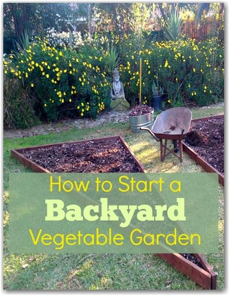 How To Start A Garden In Your Backyard by How To Start A Backyard Vegetable Garden Hometalk