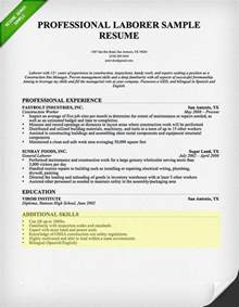 professional resume template accountant cv document template how to write a resume skills section resume genius