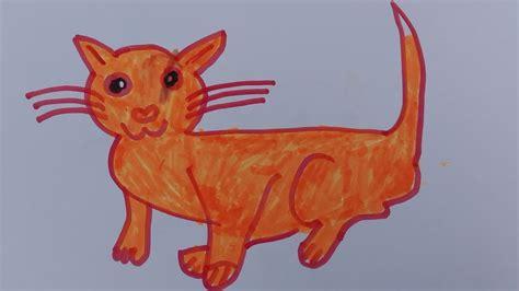 draw  cat draw  realistic cat draw  cat easy