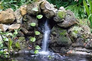 Welche Pflanzen Vertragen Sich Tabelle : pflanzen f r den zimmerbrunnen welche eignen sich ~ Lizthompson.info Haus und Dekorationen