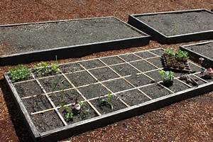 Can You Grow Potatoes in a Square Foot Garden? - One ...