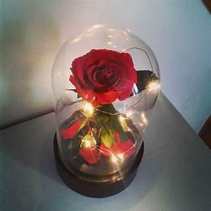 Rose Eternelle Sous Cloche : cloche verre led et rose ternelle ~ Farleysfitness.com Idées de Décoration