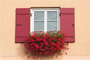 Gesunde Luftfeuchtigkeit In Räumen : hohe luftfeuchtigkeit in r umen was tun ~ Markanthonyermac.com Haus und Dekorationen