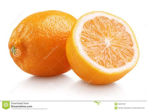 orange hybrid fruit rangpur lemandarin citrus fruit hybrid mandarin orange and lemon stock photo image 50207546