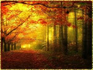 Fall Desktop Backgrounds Thanksgiving