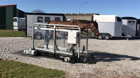 cavalcar tapis roulant pour chevaux