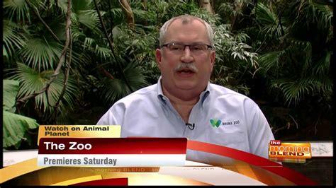 zoo  animal planet youtube