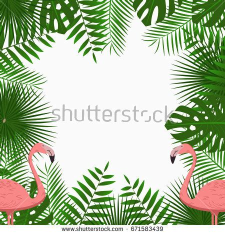 tropical wild templat tropical exotic border frame template bright stock vector