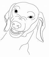 Coloring Dachshund Dog Pages Drawing Weiner Mermaid Dachshunds Jennifer Dogs Adult Tail Growling Wiener Template Sketch Printable Brien Popular Clube sketch template