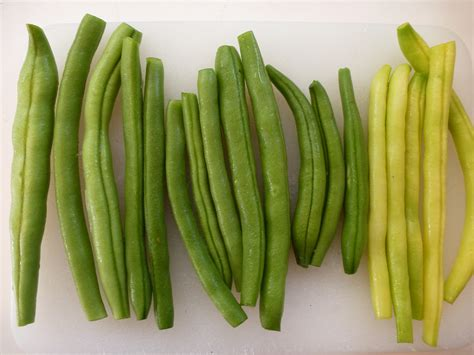 types of green beans green beans life in our little la garden