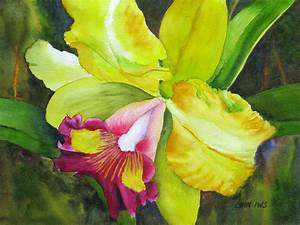 """Beautiful Orchid"""