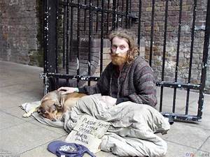 Etheldredasplace: On dogs, cats and babies...and the homeless