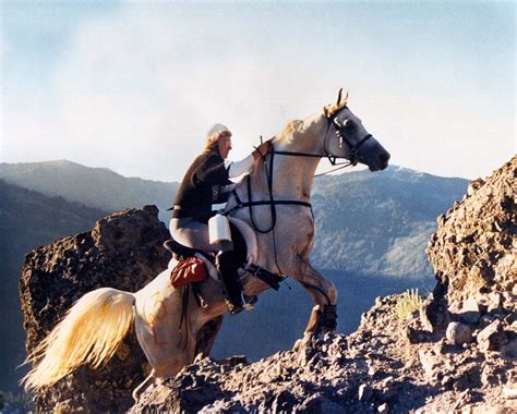 endurance tevis race cup horse arabian riding horses ride trail western won arabians breeds mile most training games rock famous