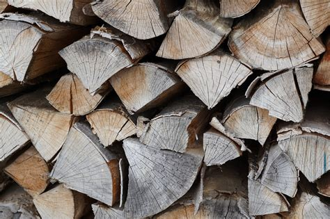 Best Logs For A Wood Burning Stove  Choosing Firewood