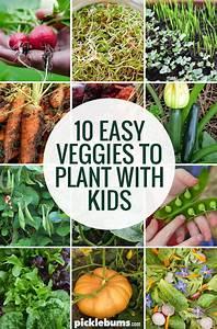 Ten Easy Veggies To Grow With Kids
