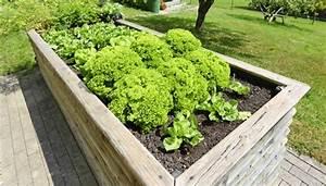 Hochbeet Im Garten : hochbeet im garten ~ Lizthompson.info Haus und Dekorationen