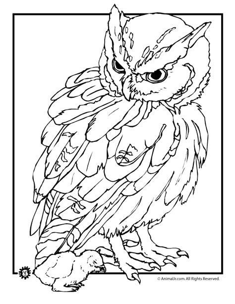 realistic coloring pages  animals az coloring pages