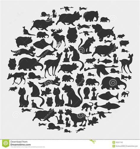 animal circle pattern stock photography image