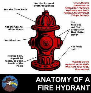 Anatomy Of A Fire Hydrant