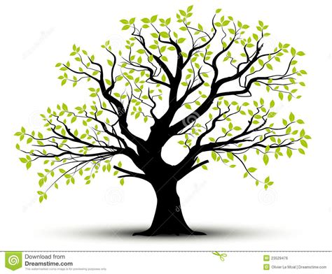 Vector Decorative Tree And Green Leaves Royalty Free Stock