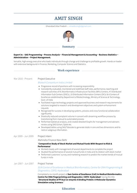 project executive resume sles templates visualcv