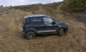 Fiat Panda 4x4 Cross : 47 best fiat panda 4x4 cross images on pinterest fiat panda 4x4 and panda ~ Maxctalentgroup.com Avis de Voitures
