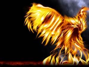Purple Phoenix Bird Wwwimgkidcom The Image Kid Has It