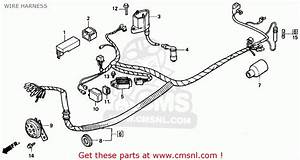 Honda Zb50 1988  J  Usa Wire Harness