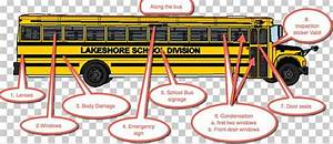 School Bus Safety School Bus Crossing Arm Png  Clipart