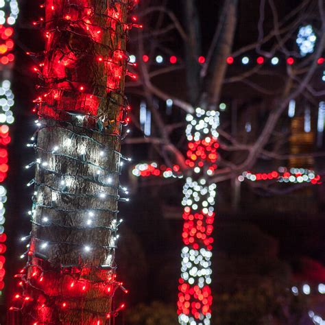 decorating trees with christmas lights outdoor christmas decorating ideas yard envy