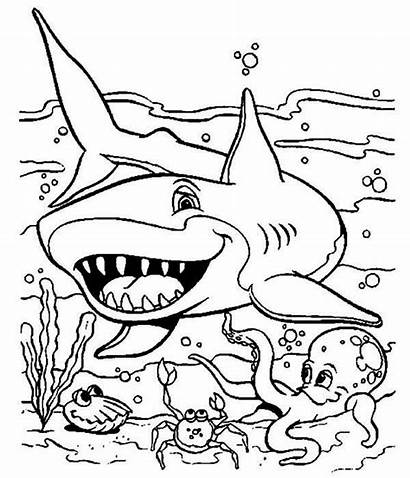 Coloring Seabed Shark Pages Sea Friendly Printable