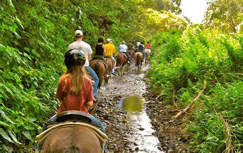 horseback riding island valley waipi waipio lovebigisland