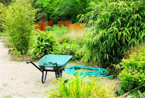 sol pour cuisine prix et plantation d 39 une haie de bambous