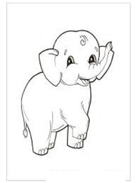 Elephant Template For Preschool by Elephant Coloring Pages For Preschool And Kindergarten