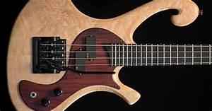 Les Claypool's Pachyderm Bass Maple 4 String Bass | 4 ...