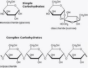 Carbohydrates | NutritionTransition.co.uk