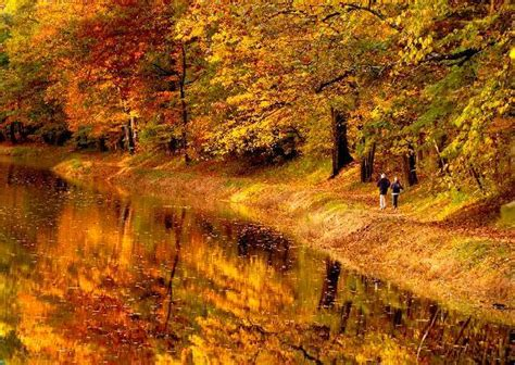 bucks county autumn reflections  ruth picture