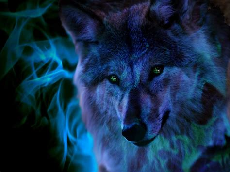 Abstract Wolf Wallpaper by Animated Abstract Wallpaper 40 Misc Wolf Wallpaper
