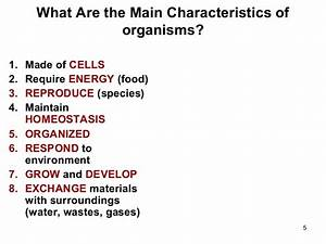 Information about Cell and it's structure and protein ...