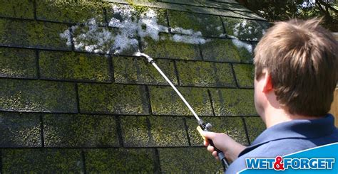 Ask Wet & Forget Stop Moss In Its Tracks And Save Your Metal Roofs Florida Rooftop Bar Manhattan Abc Roofing Supply Austin Texas What Material Is Roof Made Of Rubber Rite Reviews Repair Sarasota Fl Estimate Pro Insurance Coverage