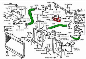 1996 Toyota Corolla Cooling System Diagram