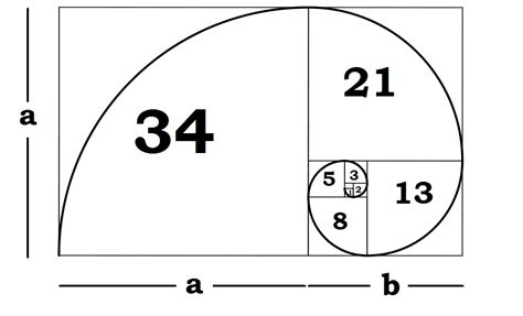 Understanding The Fibonacci Sequence Golden Ratio