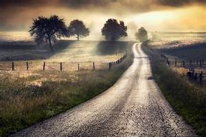 nature photography landscape morning road mist field