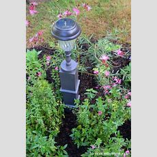 1000+ Ideas About Cheap Solar Lights On Pinterest Solar