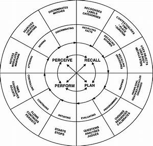 The Perceive  Recall  Plan And Perform System Of Task