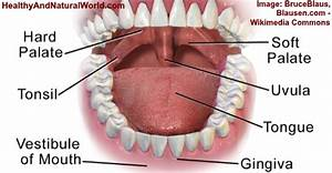 Swollen Uvula  Uvulitis   Causes  Symptoms And Effective Remedies
