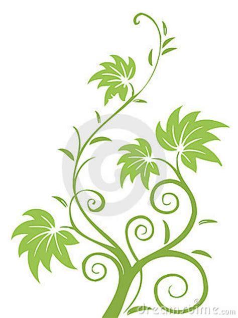 drawings  flowers leaves  vines illustration