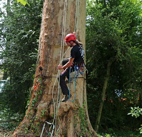 rencontre regionale d 39 arboriculture 2016