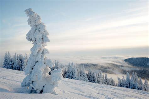 winter im schwarzwald fotografien aus dem schwarzwald